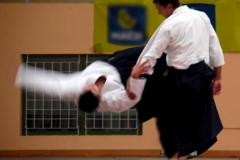 bruno-zanotti-sensei-imagen-01-heijoshin-aikido-sevilla