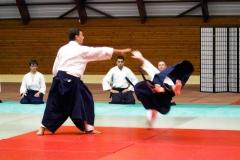 bruno-zanotti-sensei-imagen-02-heijoshin-aikido-sevilla